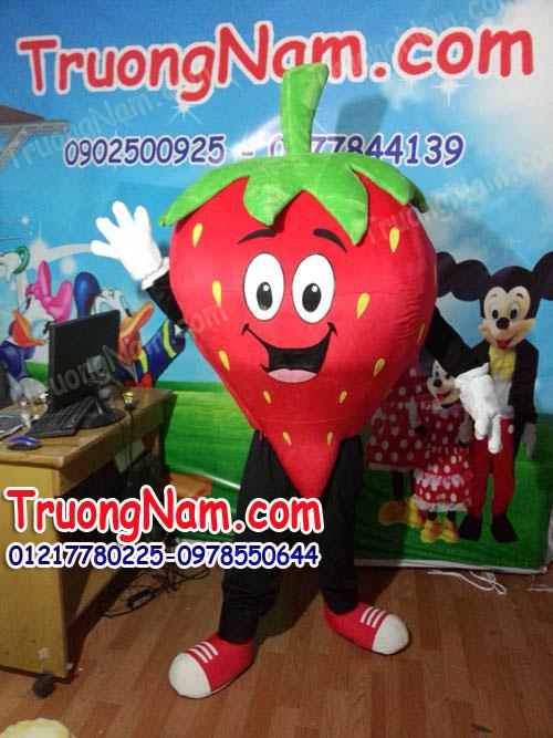 Cho-thue-trang-phuc-bieu-dien-trai-dau-truongnam.com. - Copy (4).