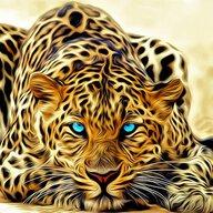 Scorpius DLord