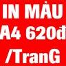 68trainguyen56694