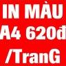 minh6866ngocngoc16