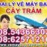 vemaybaycaytram