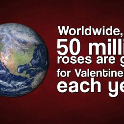 Interesting Facts about Valentine's Day--I bet nobody knew.